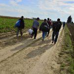 Afghaner på väg till Europa.  Bild: Radek Procyk